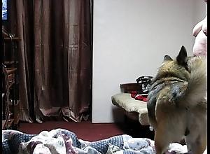 Bedroom snoop